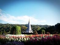 태국 【도이인타논 둘레길】 & 트라이앵글 탐방