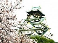 『오사카 / 교토 / 나라』 항일 유적지 역사 탐방