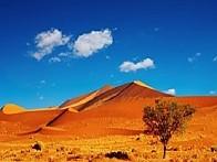 【 나미브사막 투어 】 남아프리카 이색 코스 완전일주   《 11박 13일 》