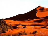 【 모로코 퍼펙트 일주 】 사하라 사막