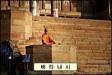 【 인 도 】 불교 성지순례